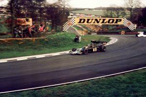 Ronnie Peterson, autor: Gillfoto